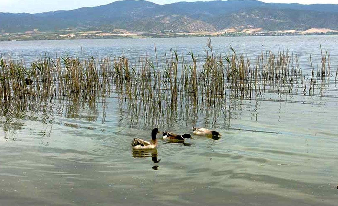 Visit Lake Volvi